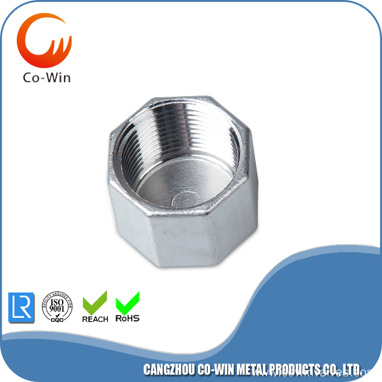 Stainless Steel 304/316 Hex End Cap NPT