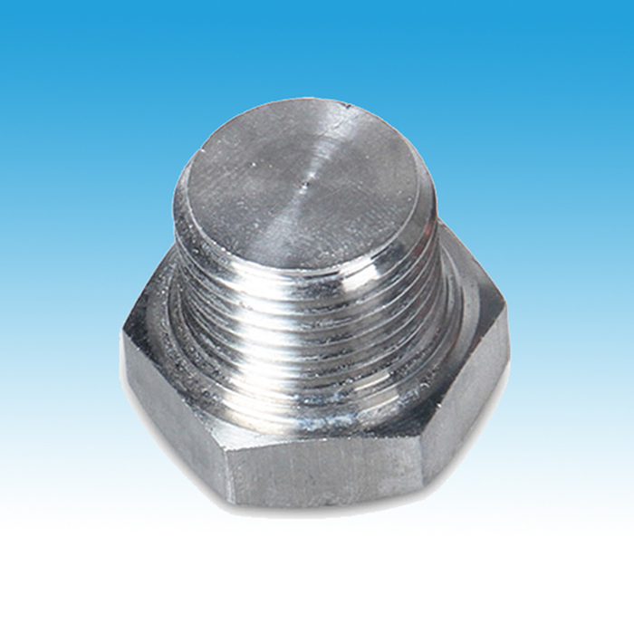 Inox Hexagon Head Plug
