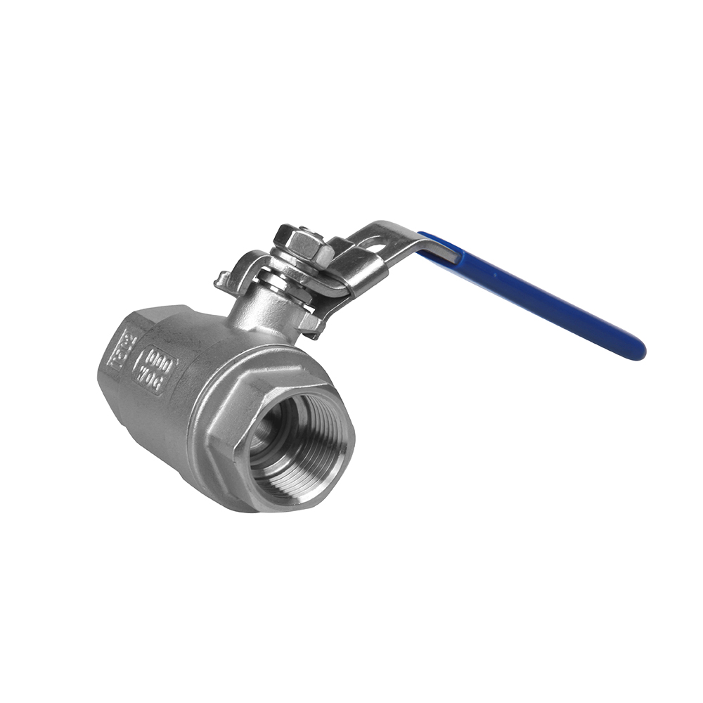 Rapid Delivery for Y Strainer -