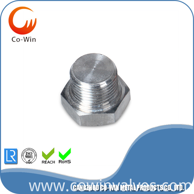 Stainless Steel Hex Plug CF8/CF8M